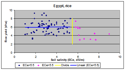 rice (paddy) and        salinity in Egypt