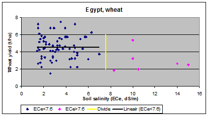 wheat and        salinity in Egypt